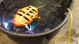 "Check out Chris Stone's ""TigerShark"" update!"